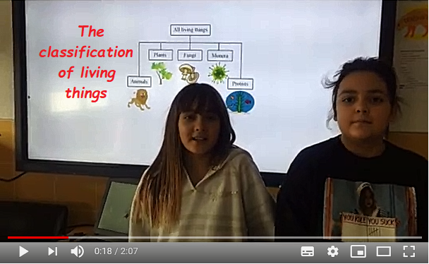 0.The classification of living things