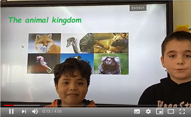 1. The animal kingdom