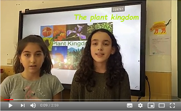 3. The plant kingdom